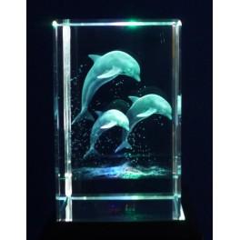 3D Kristall, Motiv springende Delphine